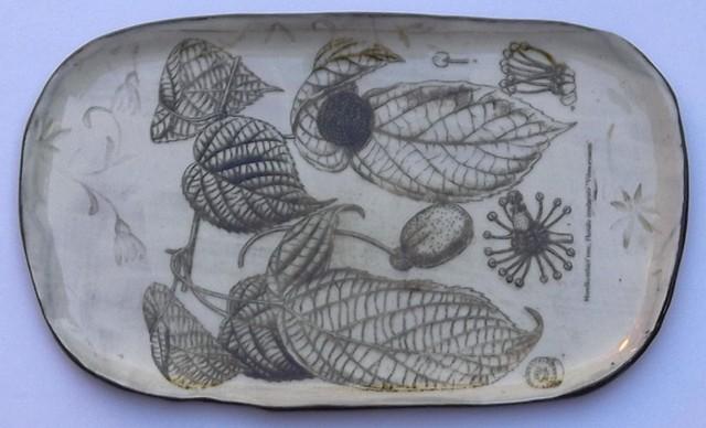 44 botanical
