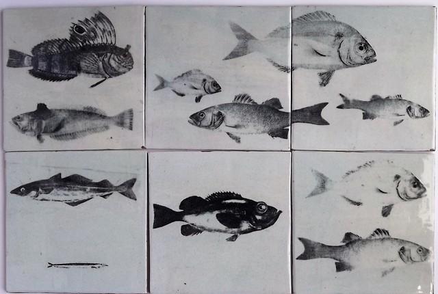 More fish tiles