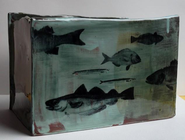 4. aquarium box