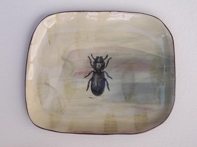 111. beetle dish