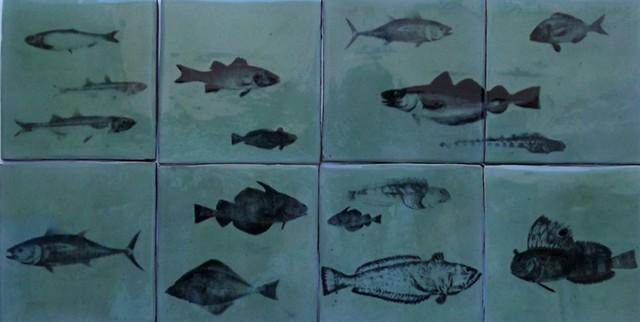 Aquarium tiles