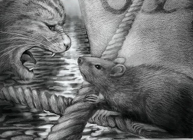 TOUGH RATTY  a sketch from the book project with the working title: THE ISLAND OF THE SIX-TOED CATS