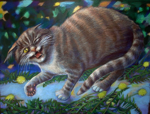 A three legged cat also called PRIMA Donna escaped from the Hemingway cats