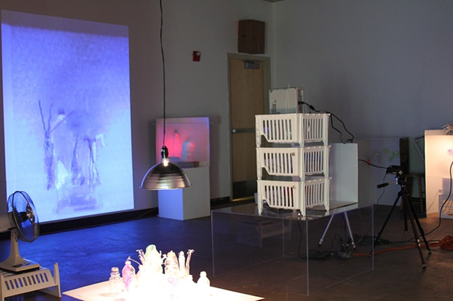 """""""Spin-O-Matic Substance & Shadow"""" installation at the IGG Gallery, Eastern Michigan University"""