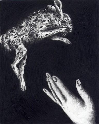 Rabbit and Hand