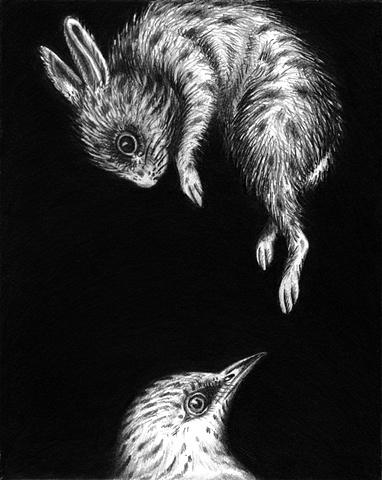 Bird and Rabbit