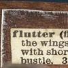 Flutter (DETAIL)