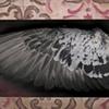 Nest (DETAIL)
