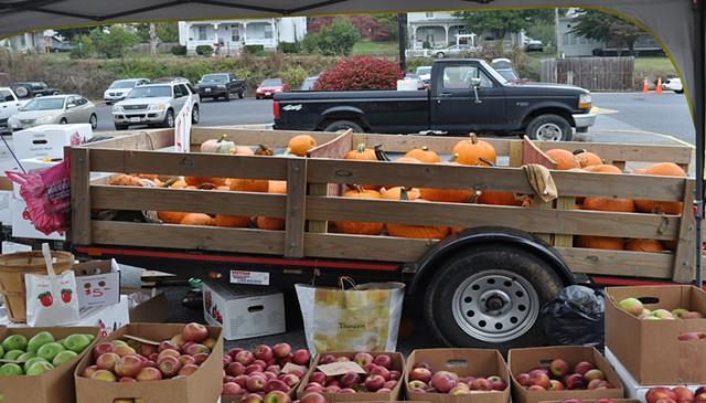 OFAR pumpkins
