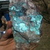 Gem Silica and Turquoise on Canigetalite