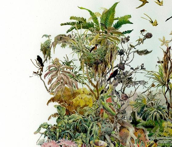 Tropic (Tortuguero) Detail