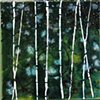 """Forest 8""""x8"""""""