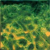 SOLD- Landscape VII