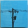 SOLD Birds On The Wire, 3 12&quot;x12&quot; Tiles