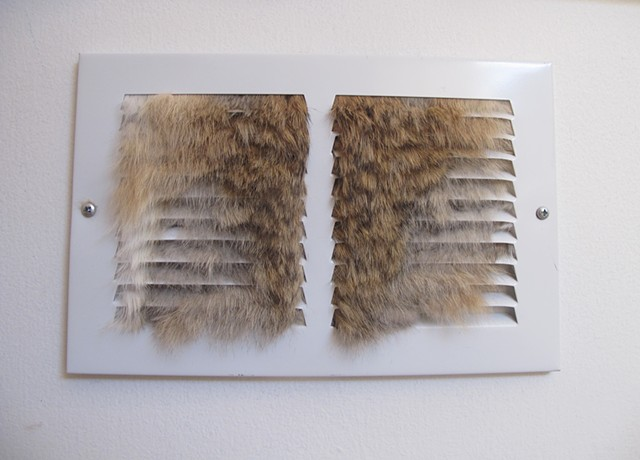 Fur in the Grille