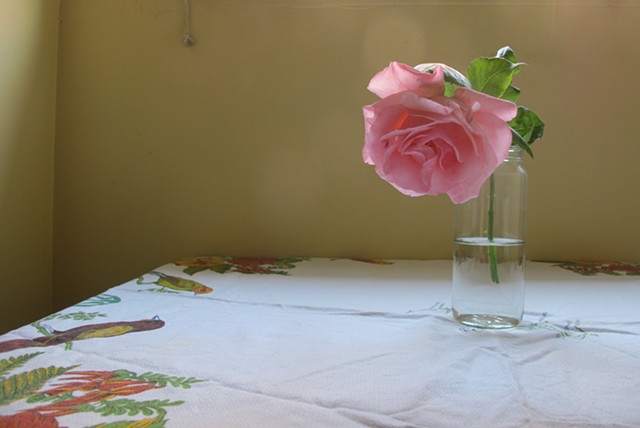 Rose in the Kitchen