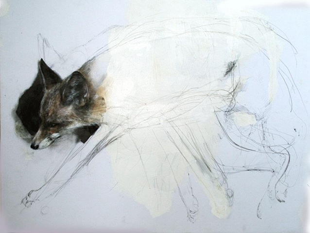 drawing, animals, fox, magical realism, contemporary, anti-narrative