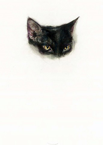 cat, drawing, contemporary realism, black cat drawing, black cat
