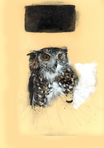 owl contemporary realism drawing