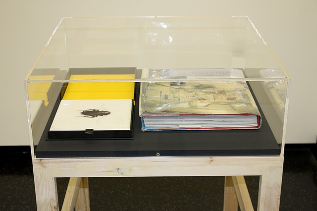 BookMare installation case. Works by Helen Chadwick, et in arcadia, etched marble and drop back box. Damien Hirst, I Want to Spend the Rest of My Life Everywhere, with Everyone, One to One, Always, Forever, Now, (library copy).