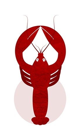 Figure 8 Lobster