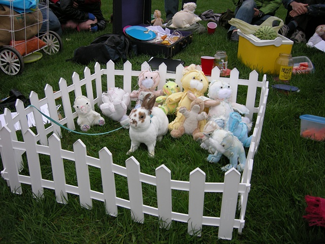 Buddies For Bunnies Reunion Spring Picnic