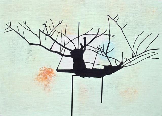 Spencer's Tree