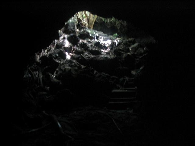 Bat cave exploration