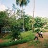 Elementary School in Siuna
