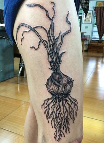 onion tattoo, food tattoo, botanical tattoo, root vegetable tattoo, root tattoo, roots, line tattoo, lifework tattoo, blackwork tattoos, leta gray, leta gray tattoo, leta botanical tattoo, etching tattoo