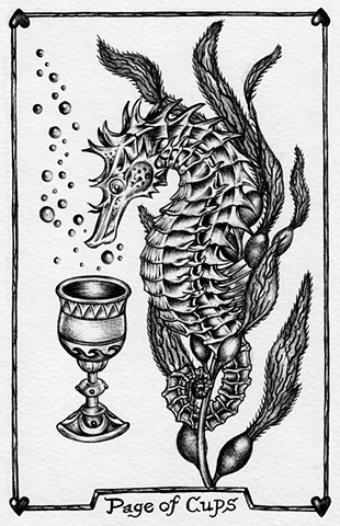 page of cups, seahorse tarot, gray tarot, leta gray, water, suit of cups
