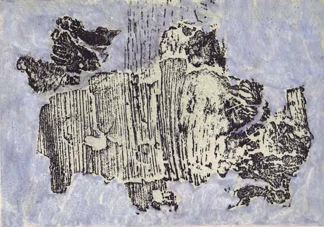 Birch Bison-Variaion