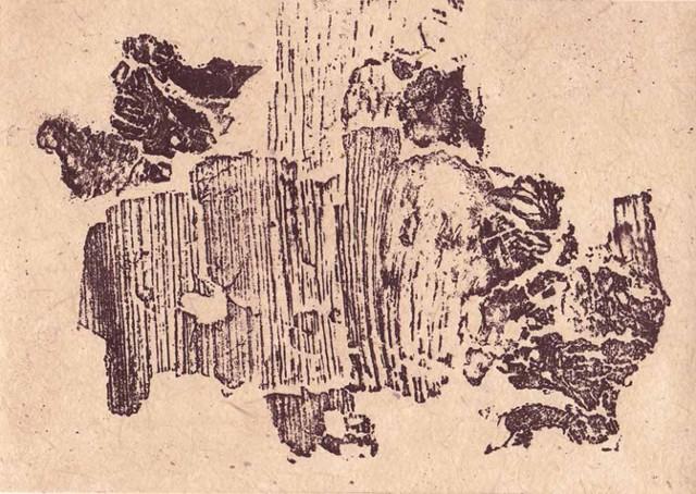 Birch Bison