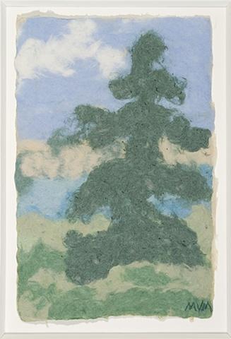 SQUAM TREE