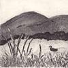 Granite Pond