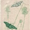 Untitled: Green Butterflies on Handmade Paper