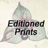 Editioned Prints