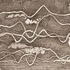 Wave & Pattern