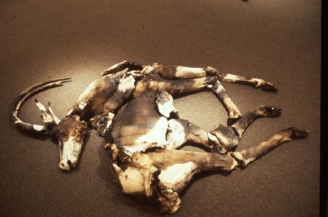Fallen Sable #2