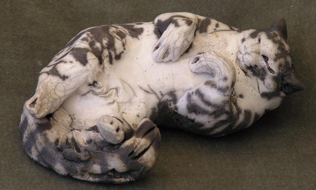Small tiger Cat