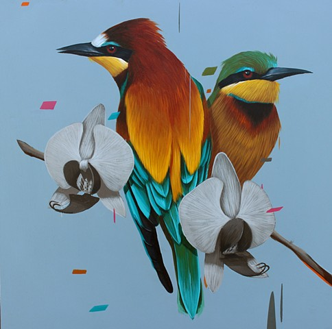 Bee Eaters and Orchids