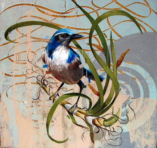 Gonzales |Birds Paintings