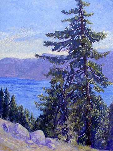 A tree on the rim of Crater Lake with the magic blue of the water as background