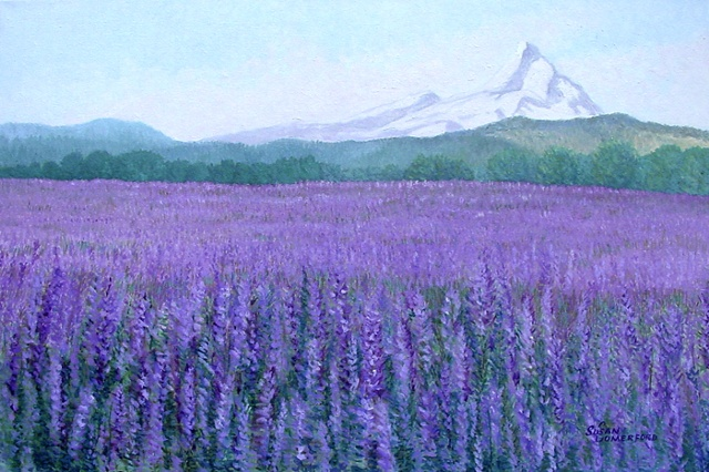 A field of Lavender in Oregon with Mount Hood in the background