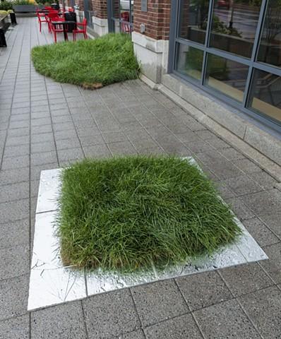 Grass 1 & 2