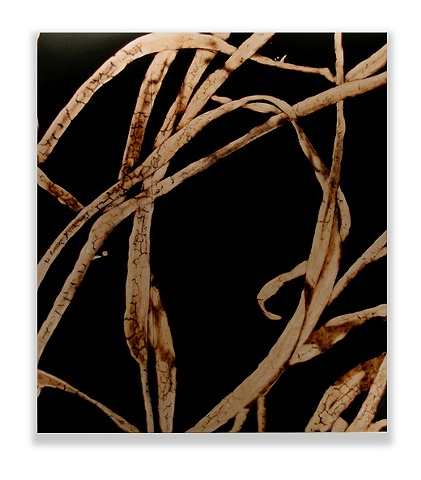 Abstract image of grass