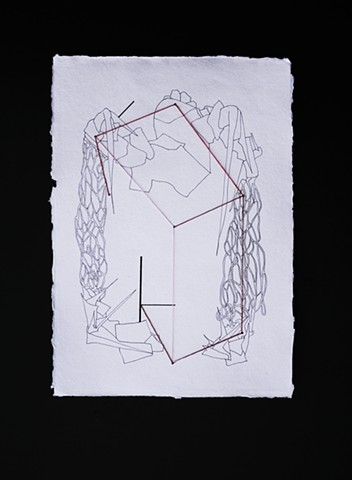 JR Larson,fur, box, fur box, drawing, thread, volumetric, string, detail, organic