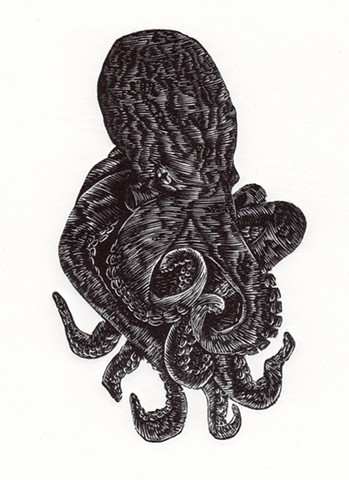 Black Octopus engraving print printmaking art wood engraving linocut woodcut resingrave squid