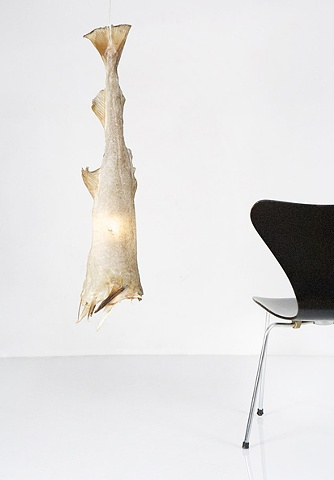 Fish lamp, fish skin. uggi-light, icelandic design