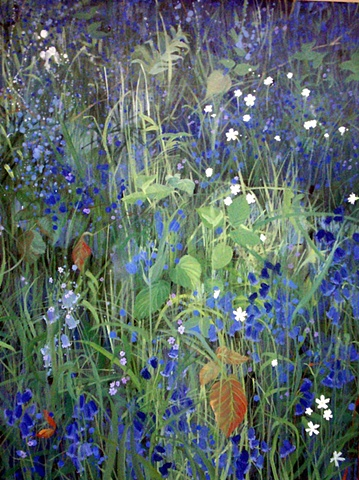 Foxley Wood - Bluebells  SOLD